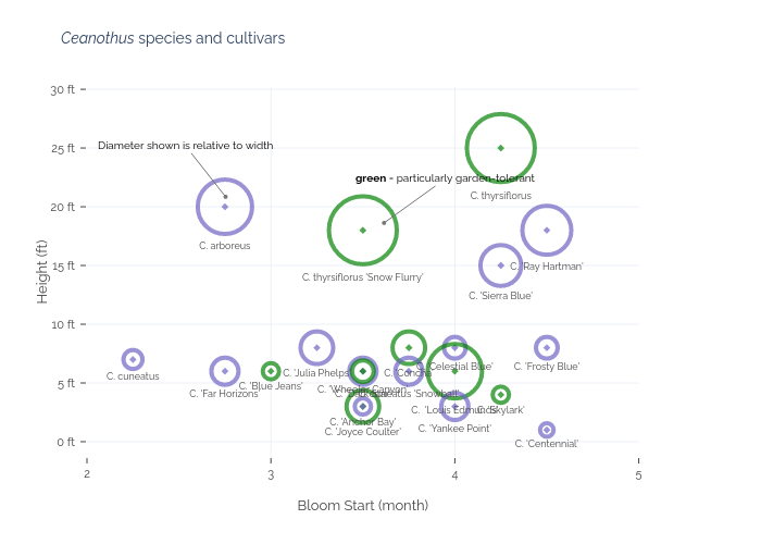 Ceanothus species and cultivars |  made by An3perez | plotly