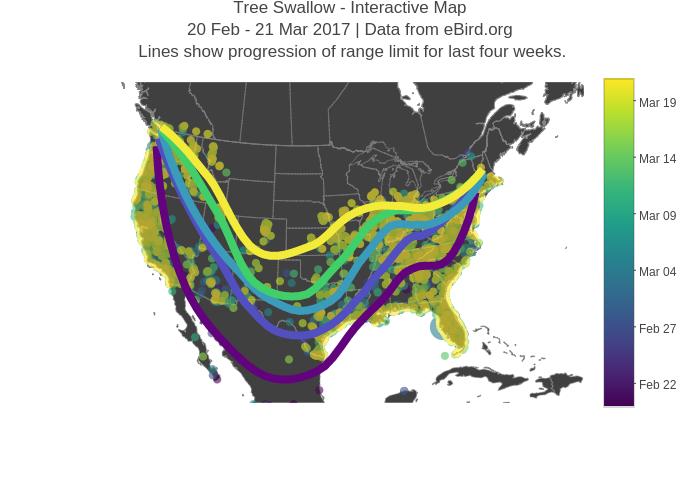 Visualizing Migration : BirdCast