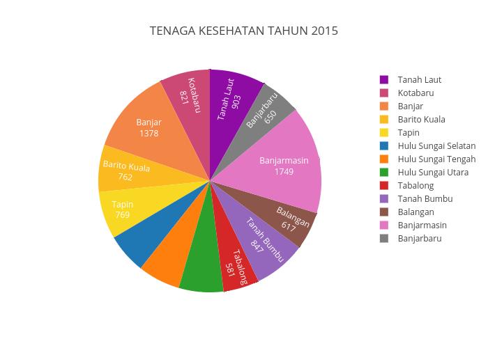 TENAGA KESEHATAN TAHUN 2015 | filled pie made by Gianino23 | plotly