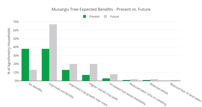 Musangu Tree Expected Benefits - Present vs. Future   grouped bar chart made by Usaidtgcc   plotly