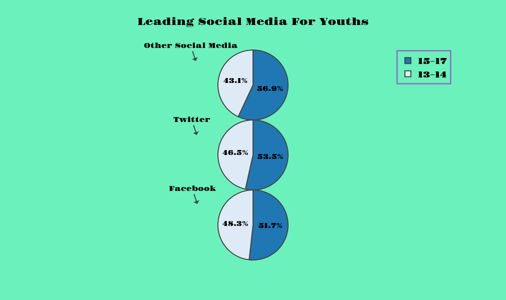 Leading Social Media For Youths